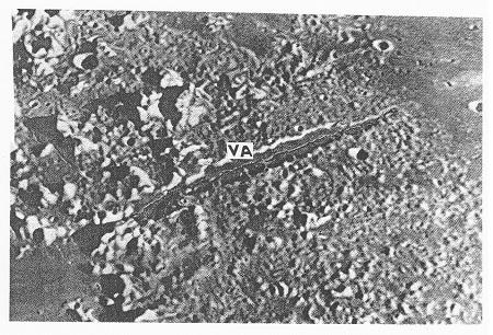 Obr. 10: Vallis Alpes (Alpské údolí, VA) na SV okraji Mare Imbrium. P. m. B.