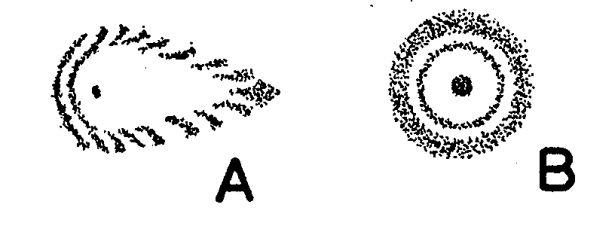 Obr. 5: ohybové kroužky rozostřeného obrazu hvězdy při vycentrovaném (A) a nevycentrovaném (B) objektivu dalekohledu